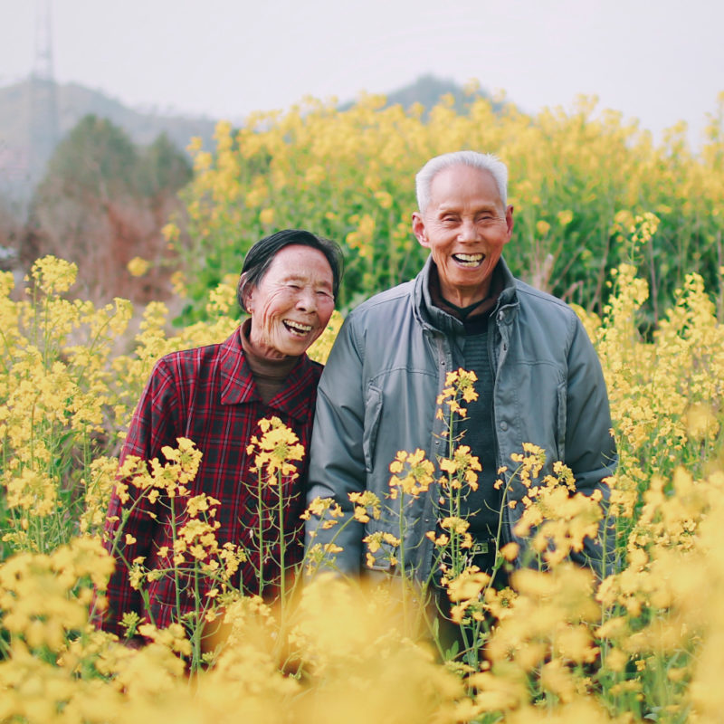 Happy elderly couple smiling in a field of yellow flowers.